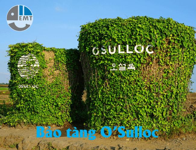 Bảo tàng O'Sulloc