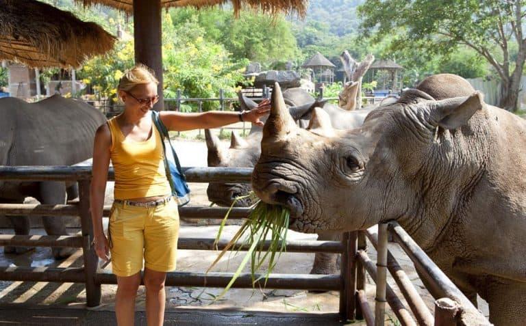 Chiang Mai có gì ?